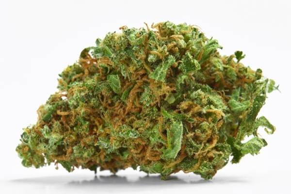 Wholesale CBD Buds